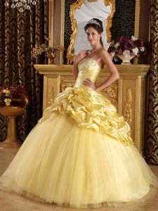 Yellow Beaded Taffeta and Tulle Quinceanera Dresses in Belfast