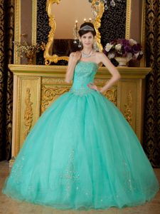 Turquoise Ball Gown Beaded Organza Quinces Dresses in Ballycastle