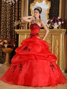 Red Organza Dress For Quinceanera with Black Embroidery in Auckland