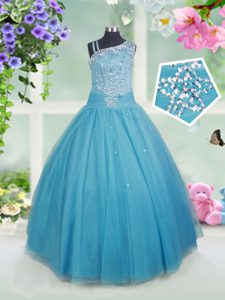 Asymmetric Sleeveless Side Zipper Evening Gowns Teal Tulle
